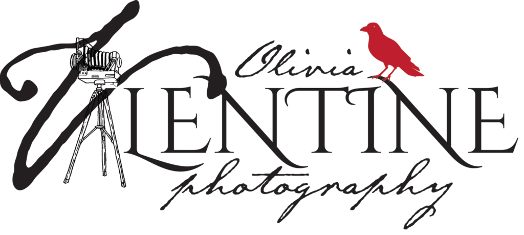Olivia Valentine Photography